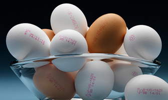 Egg Coding and Marking